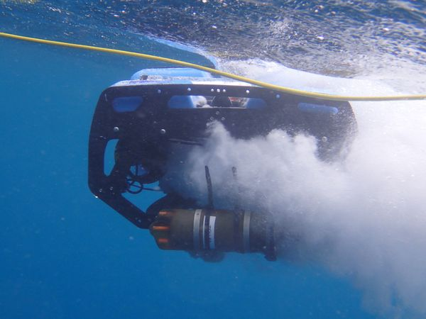 Field Trip: Using robots for characterizing coral reef soundscapes in US Virgin Islands