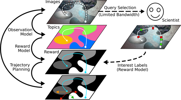 Active Reward Learning for Co-Robotic Vision-Based Exploration in Bandwidth Limited Environments